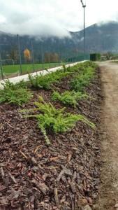 Parco Urbano Cembra