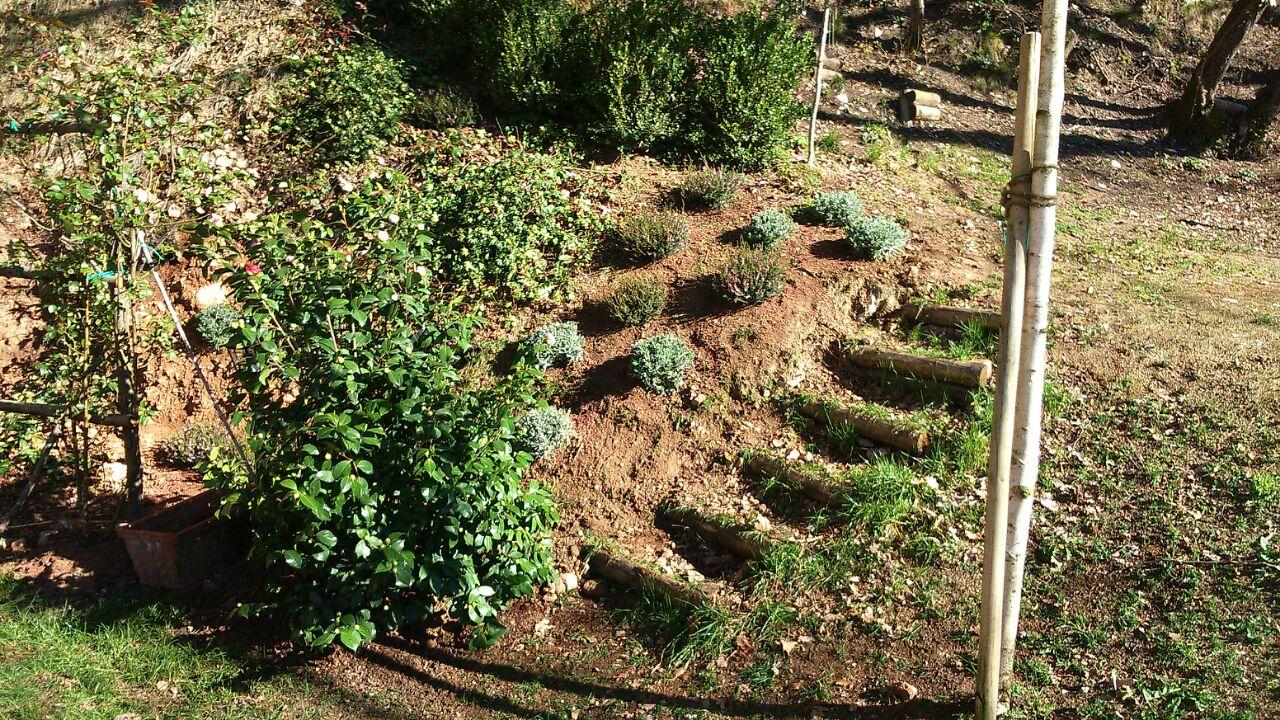Spazioverde progettazione del tuo giardino spazioverde for Realizzazione giardini privati