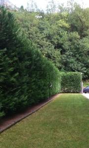 giardino privato 4